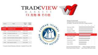 Trade view